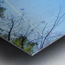Landscape (200) Metal print