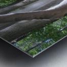 Landscape (266) Metal print