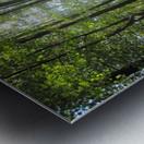 Landscape (37) Metal print
