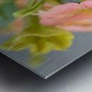 Orange Flowers Photograph Metal print