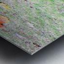 duck (3) Metal print