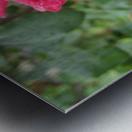 Flower (9) Metal print
