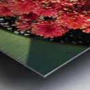 Flower (4) Metal print