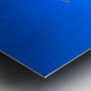 Standing Ovation  Metal print