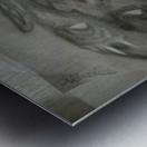 2faced Metal print