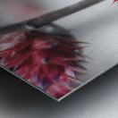 spiked flower Metal print
