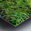 Colorful Plant Pots Marrakech 4 Metal print