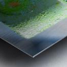 GREEN CAP Metal print