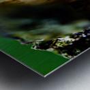 Abstract Macro Nature Photography 08 Metal print