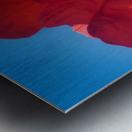 Red Poppy Sky Metal print