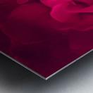 red rose background Metal print