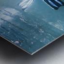 freediver Metal print