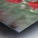 Red Flower Photograph Metal print