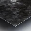 Plasmolen – 16-05-19 Metal print