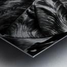 Boldness of Nature Metal print