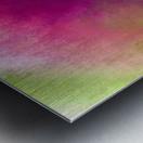 Color Burst - Flower Field Metal print