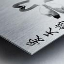 Chinese Concept 21A Metal print