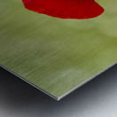 A solo Red Poppy Metal print
