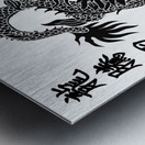 Chinese Concept 44A Metal print