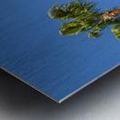 Idyllic Palm trees Metal print
