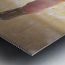 Peaceful Meadow Utah United States Metal print