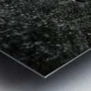 Web of Pearls Metal print