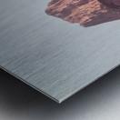 The Three Sisters Metal print