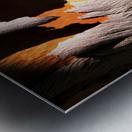Salmon Bark Peeling Metal print