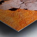 Salmon Bark Peeling 2 Metal print