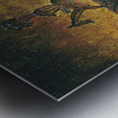 The night horserider Metal print