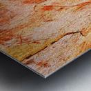 Eucalyptus Bark And Patterns Metal print