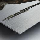 Shadow horserider 1 Impression metal