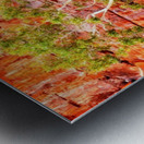 Pink Delight - Ormiston Gorge Metal print