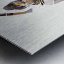 amazing grace6 Metal print
