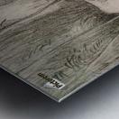 The Charcoal Burner's Hut Metal print