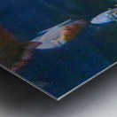 Playful fish Metal print