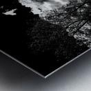 _1150905_1572477085.9517 Metal print