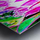 pink protea Metal print