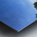 Simsbury Wetland Metal print