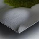 Purete Metal print