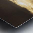 Seeing Double Metal print
