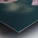 Lupinus Luteus Pink Metal print