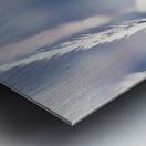 Spica Metal print