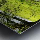 Finding Shade - Northern Ireland 2 Metal print