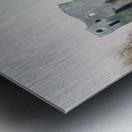 Mahee Castle Metal print