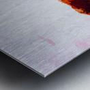 LaBelle Metal print