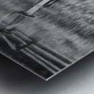 Did We Just Have a War Metal print