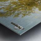 A walk in nature Metal print