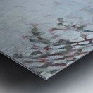 Le Plateau Mont Royal Metal print