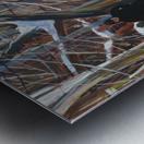 Outremont Lane Shabbat Metal print